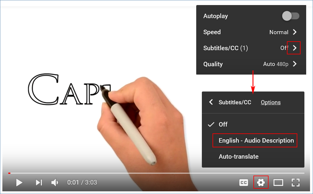 Image of a YouTube video and the Settings menu