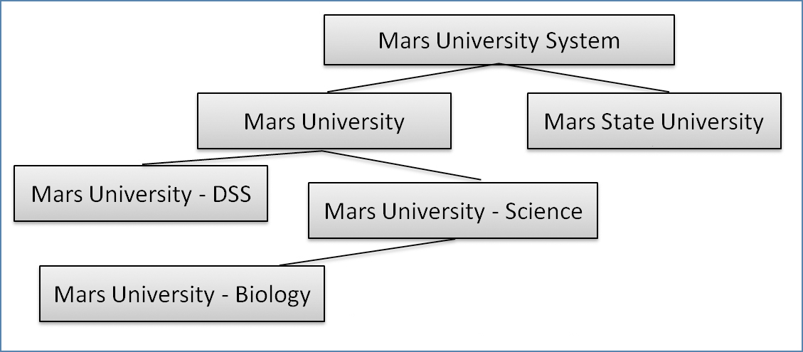 Image of a hierarchical university structure
