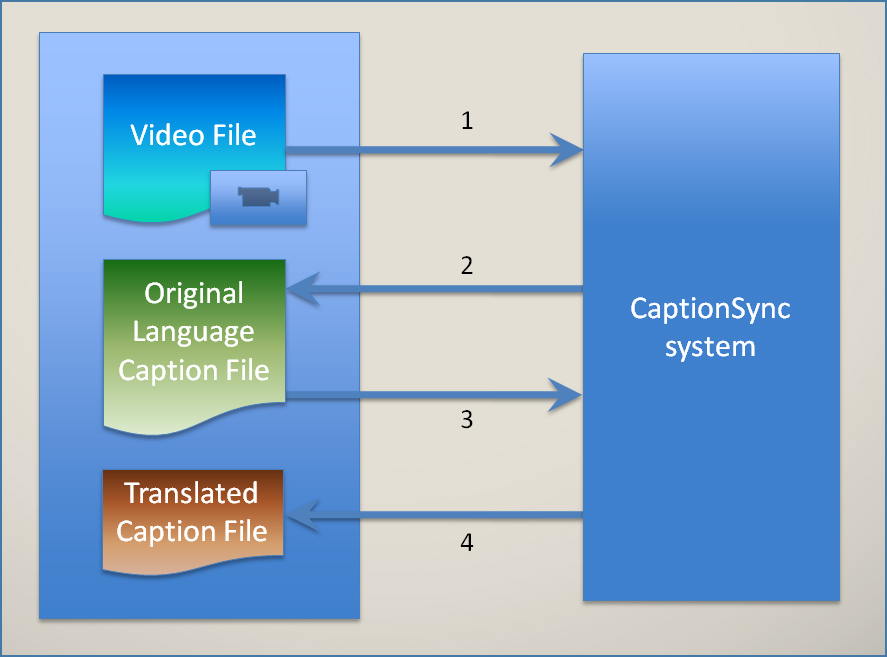 Translation Overview Diagram